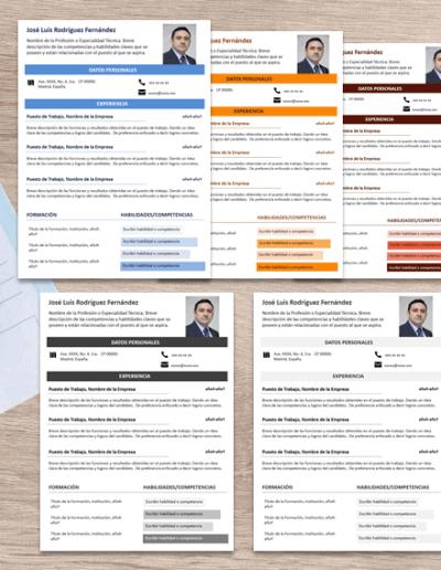 Plantilla para Currículum Infoblock varios colores